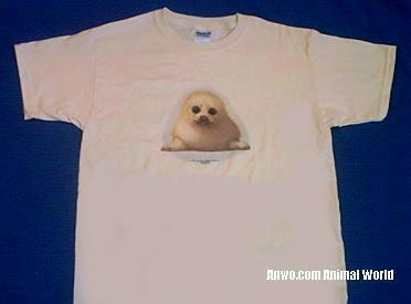 harp seal t shirt