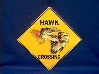 Red Tail Hawk Crossing Sign At Animal World