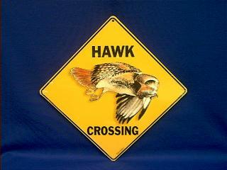 hawk crossing sign