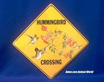 hummingbird crossing sign