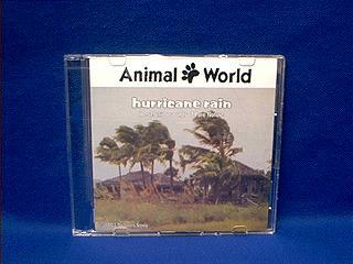 hurricane sounds cd