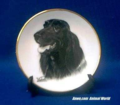 irish setter plate porcelain