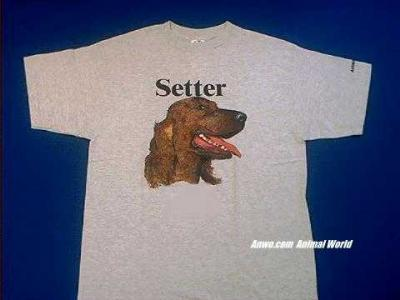 irish setter t shirt face