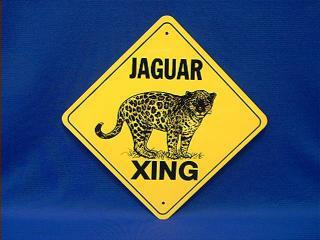 jaguar crossing sign