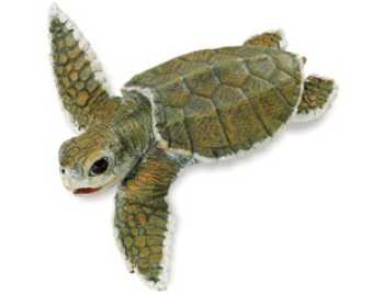 kemps ridley sea turtle baby toy