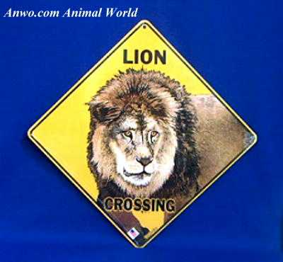 lion crossing sign usa