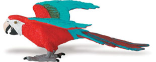 macaw_toy_red.jpg