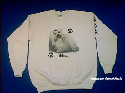 maltese sweatshirt