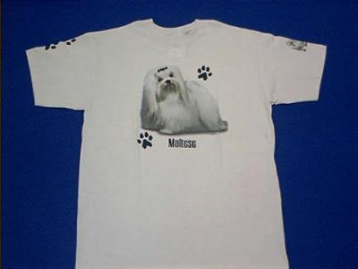 maltese t shirt