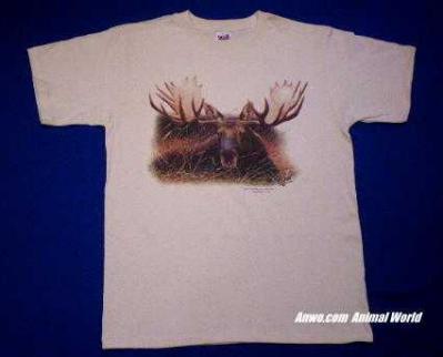 moose t shirt usa