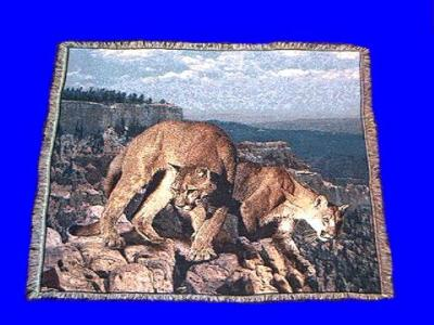 Mountain Lion Cougar Blanket Throw Tapestry At Animal World New Lion Blanket Or Throw