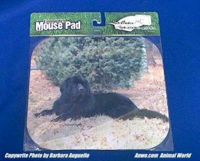 newfoundland mouse pad
