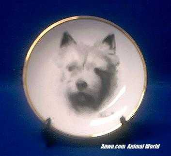 norwich terrier plate porcelain