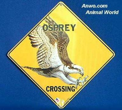 osprey crossing sign