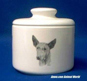 pharaoh hound jar porcelain
