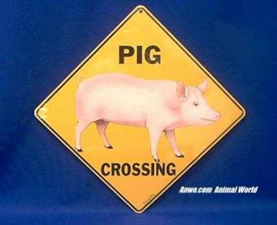 pig crossing sign color
