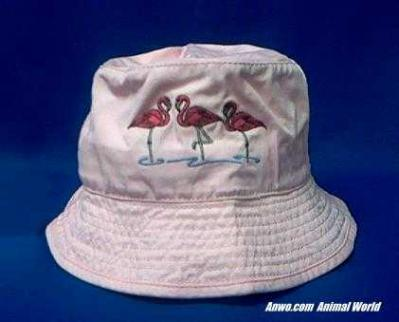 pink flamingo hat embroidered floppy