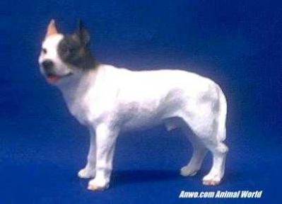 pit-bull-figurine-white.JPG