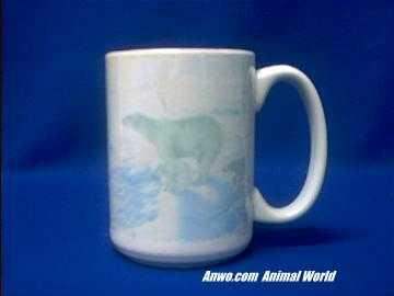 polar-bear-mug-porcelain-color.JPG