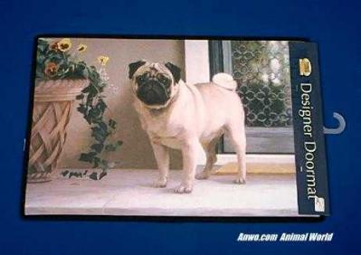pug doormat welcome mat