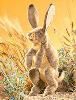 rabbit puppet jackrabbit
