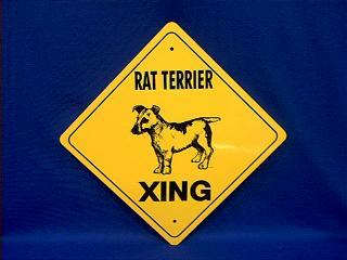 rat terrier crossing sign