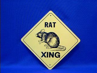 rat crossing sign