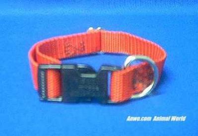 red dog collar adjustable 16 x  3/4