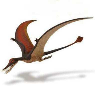 rhamphorhynchus toy dinosaur miniature