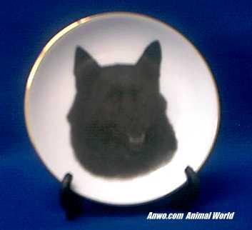 schipperkee plate porcelain gold trim