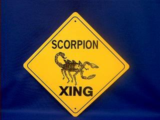 scorpion crossing sign