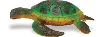 green sea turtle toy