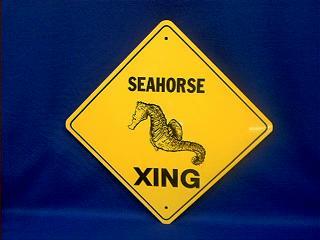 sea horse crossing sign