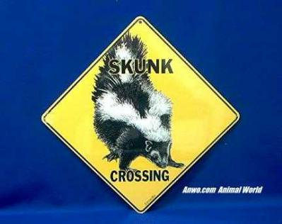 skunk crossing sign color