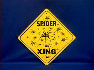 spider crossing sign