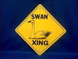 swan crossing sign