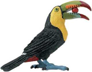 toucan toy bird