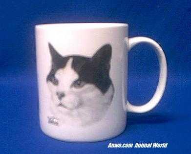 tuxedo-cat-mug-porcelain.JPG