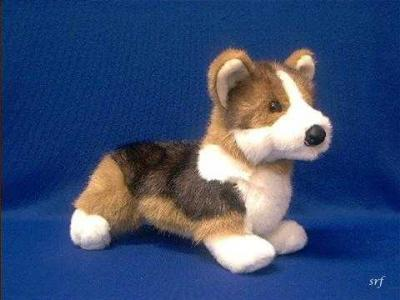 welsh corgi plush stuffed animal toy tri color