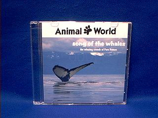 whale sound cd
