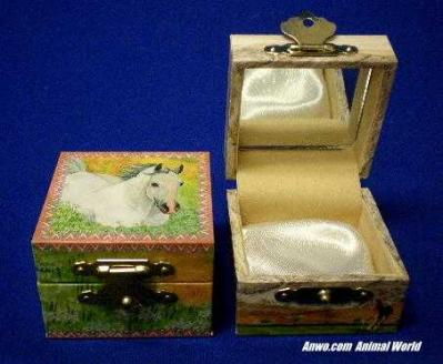 white horse jewelry box meadow