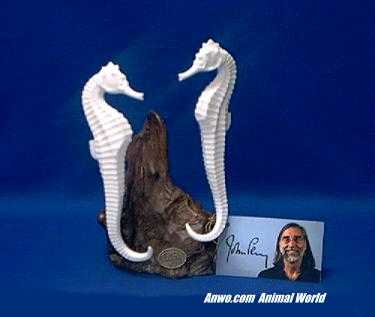 white seahorse figurine statue pair by john perry