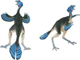 Caudipteryx_toy.jpg