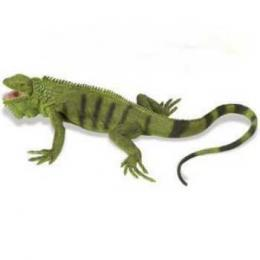 adult iguana toy miniature