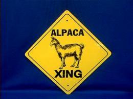 alpaca crossing sign