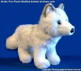 arctic fox plush stuffed animal toy