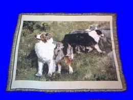 australian shepherd blanket