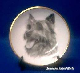 australian terrier plate porcelain