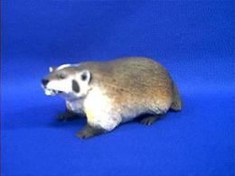 badger figurine