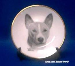 basenji plate porcelain